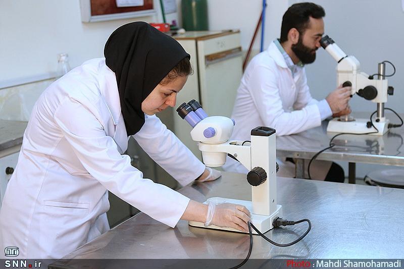 کرونا با فناوری ایران ساخت شکست می خورد ، محصولی ضدکرونایی از فعالان زیست بوم نوآوری