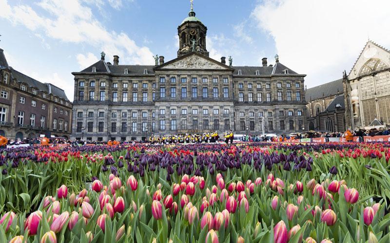 جاذبه های گردشگری آمستردام ، تصاویر