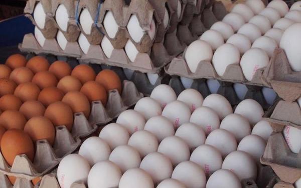 قیمت هر کیلو تخم مرغ برای مصرف کننده چقدر است؟