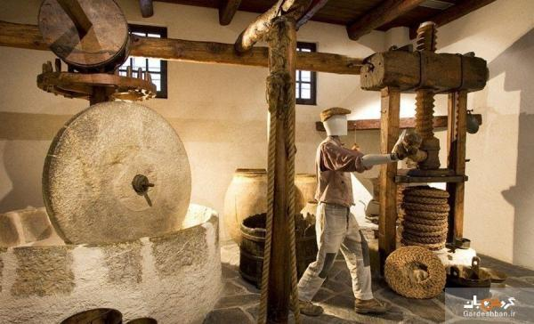 موزه ای عجیب از میوه ای بهشتی در ایتالیا