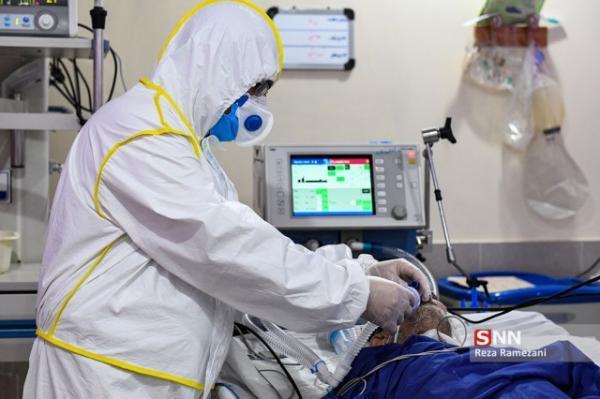 452 فوتی کرونا در شبانه روز گذشته ، 19731 بیمار دیگر شناسایی شدند